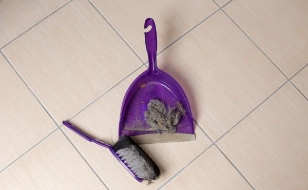 dust and sweep the bathroom