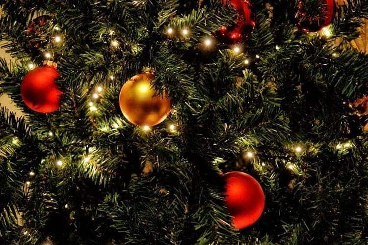Hang your Christmas tree lights