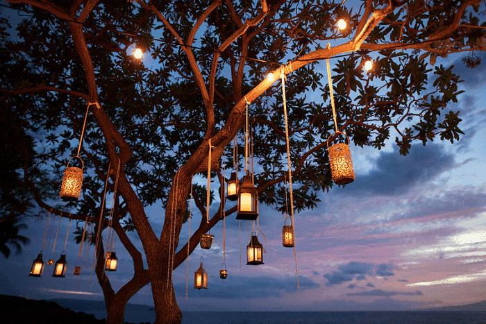 Backyard Tree Lanterns Landscaping Idea